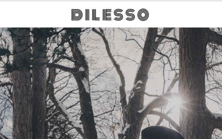Dilesso complaints. Dilesso fake or real? Dilesso legit or fraud?