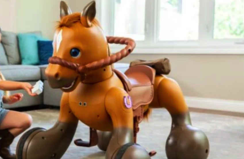 an Interactive Ride-On Pony Scooter scam